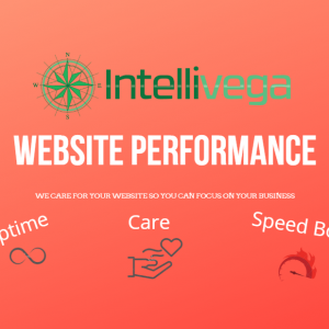 Our Website Performance Plan Includes All Other Plans As Well As Uptime Monitoring And Speed Enhancements.
