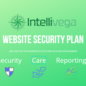Our Website Security Plan Includes Security Monitoring And Reporting.